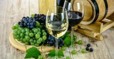 Вино в Испании: эликсир, излучающий солнце