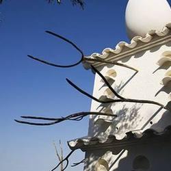 Экскурсия Треугольник Дали, фотография 2
