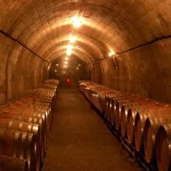 Экскурсия Монтсеррат и винодельня, фотография 3