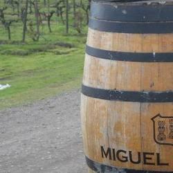 Экскурсия Монтсеррат и винодельня, фотография 4