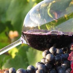 Экскурсия Монтсеррат и винодельня, фотография 7