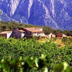 Экскурсия Монтсеррат и винодельня, фотография 8