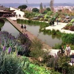 Ботанический сад (Jardín Botánico de Barcelona)